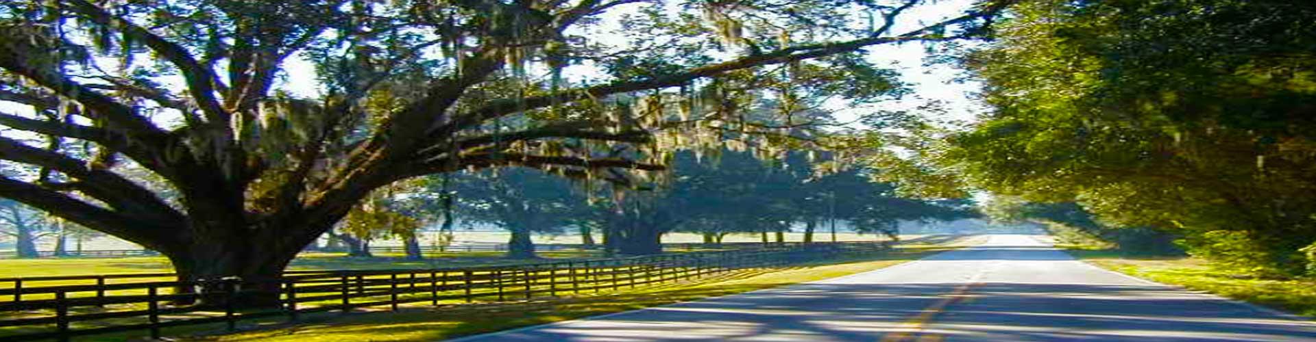 Rolling Hills | Available Land | Ocala, Florida